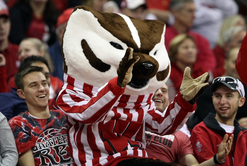 Year Of The Badger Womens Hockey