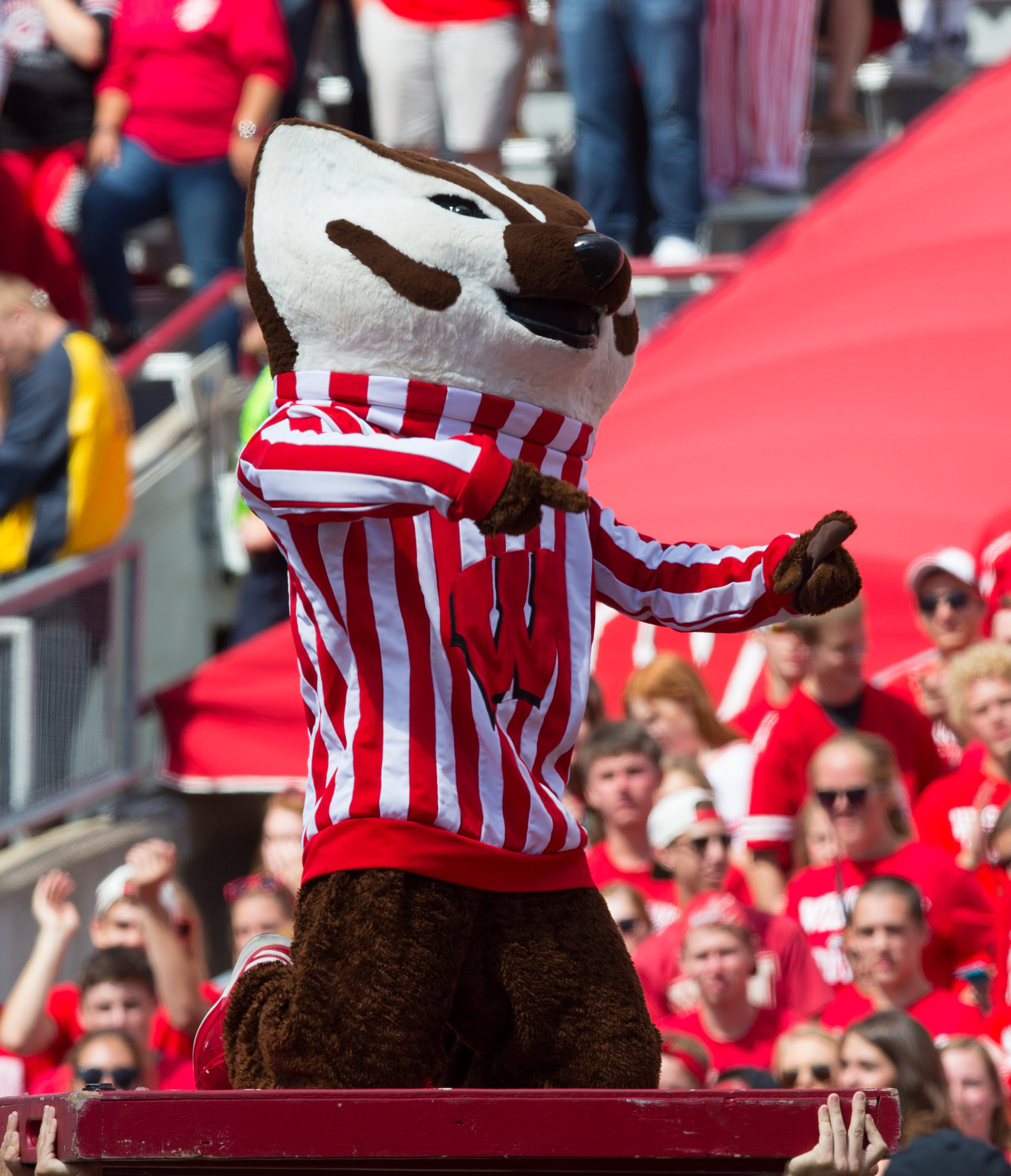 Mother 39 S Day Gift Ideas With A Wisconsin Badger Flavor Page 3